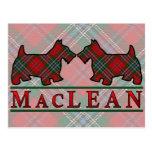 Perros del escocés del tartán de MacLean del clan Postales