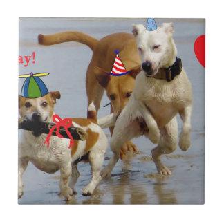 perros del feliz cumpleaños azulejo cuadrado pequeño