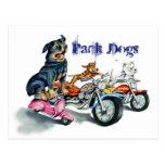 Perros del paquete postales