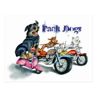 Perros del paquete postal