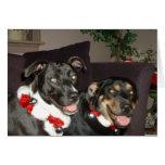Perros del tintineo felicitacion
