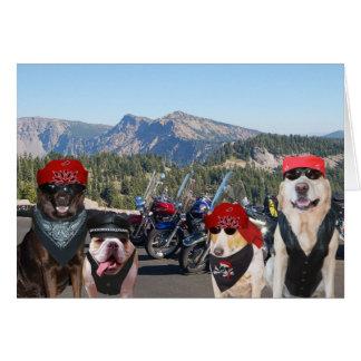 Perros divertidos del motorista en un cumpleaños tarjeta de felicitación