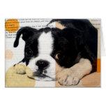 perros en diseño de las técnicas mixtas tarjeta