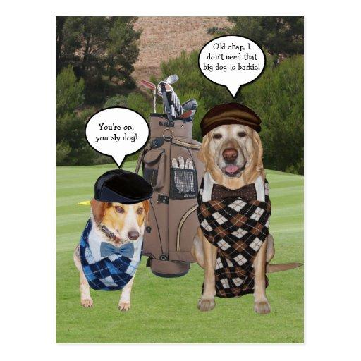 Perros en el campo de golf postales