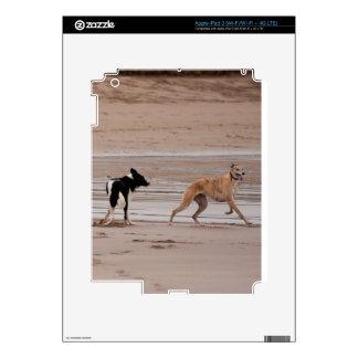 Perros en la piel del iPad 3 de la playa iPad 3 Skin