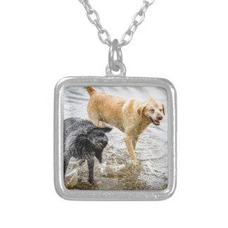 Perros en la playa collar personalizado