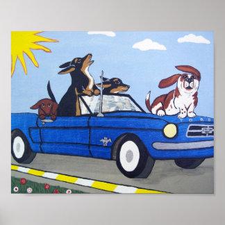 Perros en poster que cruza del verano azul del mus
