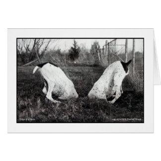 Perros en un agujero tarjeta de felicitación