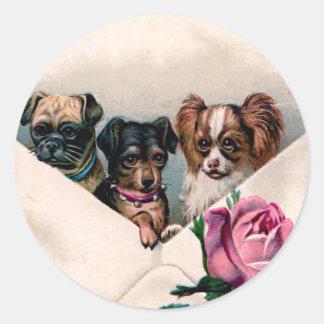 Perros en un sobre pegatina redonda