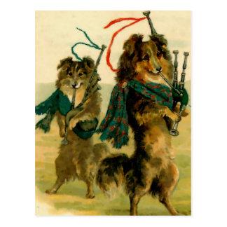 Perros escoceses del gaitero postal