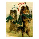 Perros escoceses del gaitero tarjetas postales