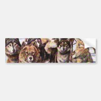 Perros esquimales de Alaska Pegatina Para Auto