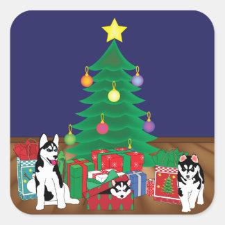Perros esquimales que juegan por debajo la tarjeta pegatina cuadrada