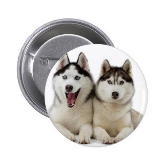 Perros fornidos