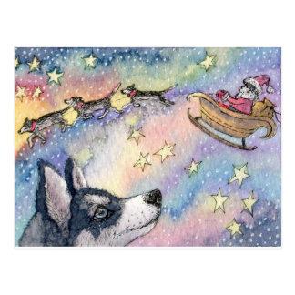 Perros fornidos del trineo postales