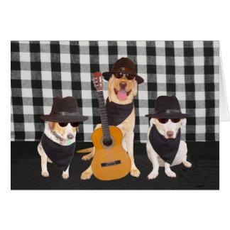 Perros frescos divertidos tarjeta de felicitación