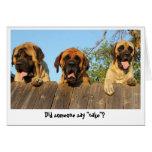 Perros gigantes que miran sobre la tarjeta de cump