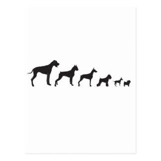 Perros, grandes y pequeños tarjetas postales