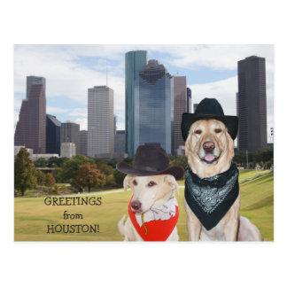 Perros lindos/saludos del laboratorio de Houston Postales