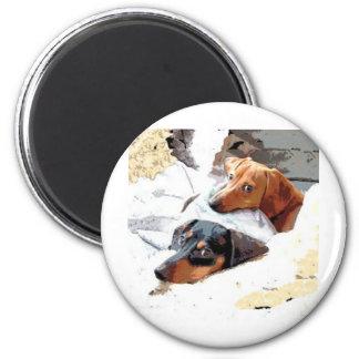 Perros Napping Imán Redondo 5 Cm