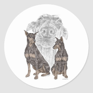 Perros negros del Doberman Etiquetas Redondas