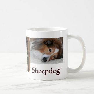 Perros pastor de Shetland Tazas