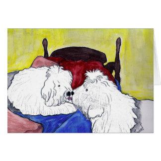 Perros pastor ingleses viejos que besan a las tarjeta de felicitación
