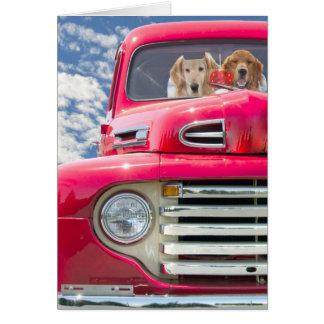 Perros perdigueros Aniversario-De oro en el camión Tarjeta De Felicitación