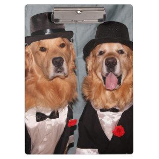 Perros perdigueros de oro apuestos en smokinges