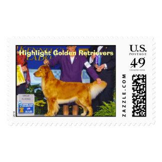 Perros perdigueros de oro del punto culminante sellos postales