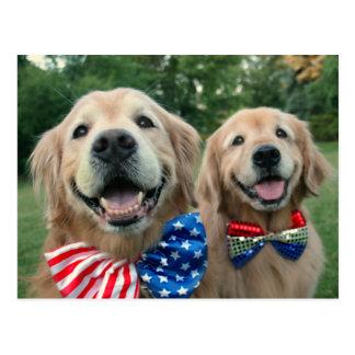 Perros perdigueros de oro en pajaritas