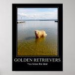 Perros perdigueros de oro poster