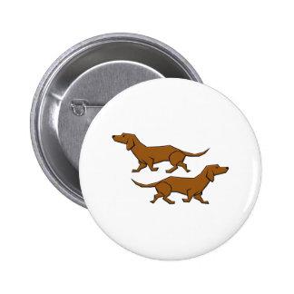 Perros perro basset sausage dogs