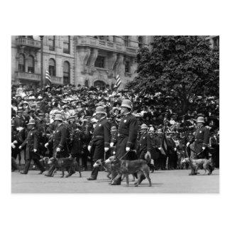 Perros policía en desfile: 1900s tempranos postales