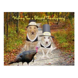 Perros/postal divertidos adaptables de la acción d postales