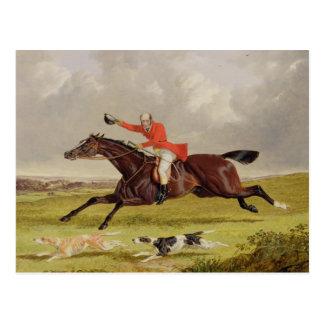 Perros que animan, 1839 (aceite en el panel) tarjetas postales