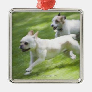 Perros que corren en césped adorno navideño cuadrado de metal