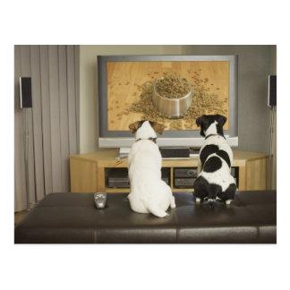 Perros que miran el plato del perro con la comida tarjetas postales
