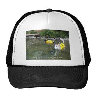 Perros que nadan los chalecos salvavidas gorro de camionero