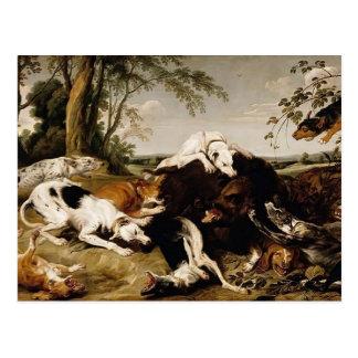 Perros que traen abajo de un verraco de Francisco  Tarjeta Postal