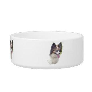 Perros - razas del juguete - Papillion Tazon Para Gato
