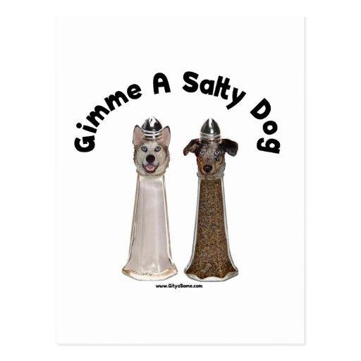 Perros salados de la sal y de la pimienta del postal