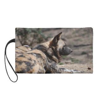 Perros salvajes africanos de reclinación