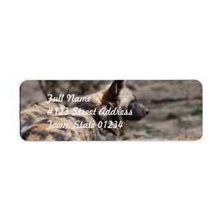 Perros salvajes africanos de reclinación etiqueta de remite