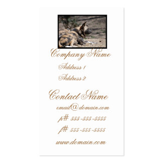 Perros salvajes africanos de reclinación tarjeta de visita