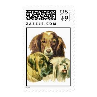 Perros Timbre Postal