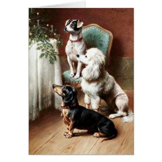 Perros - una invitación del navidad, ilustraciones tarjeton