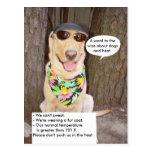 Perros y calor postales