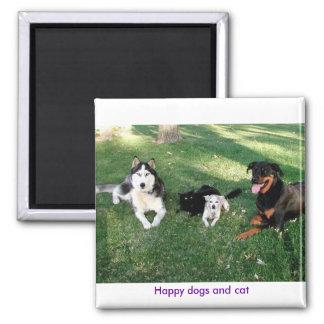 Perros y gato felices imán cuadrado