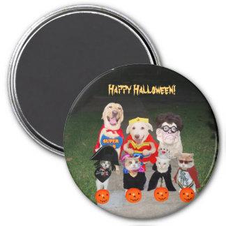 Perros y gatos divertidos de Halloween Imán Redondo 7 Cm